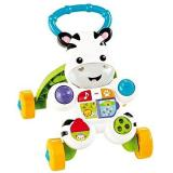 Fisher-Price Zebra CZ (0887961319972)