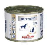 Royal Canin Veterinary Diet Canine Recovery - 24 x 195 g