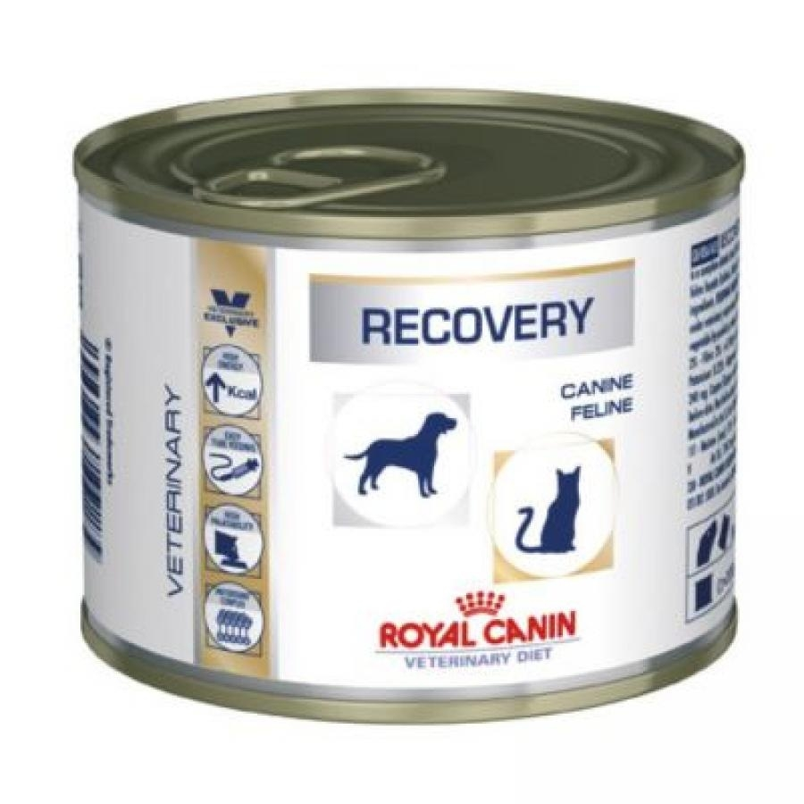 Royal Canin Veterinary Diet Canine Recovery - 12 x 195 g