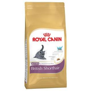 400 g Royal Canin na zkoušku za super cenu! - British Shorthair Kitten