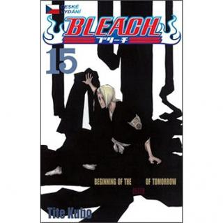 Bleach 15: Beginning of death tomorrow (978-80-7449-252-5)