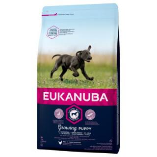 Eukanuba Growing Puppy Large Breed kuřecí - 15 kg
