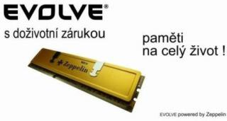 EVOLVEO DDR II 1GB 800MHz EVOLVEO GOLD (box), CL6 (doživotní záruka)