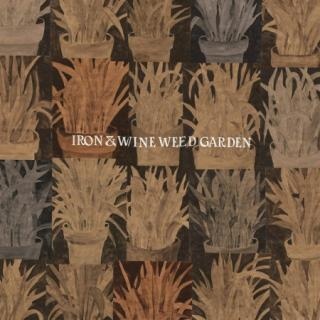 Iron and Wine : Weed Garden ( EP ) - Coloured Vinyl  LP