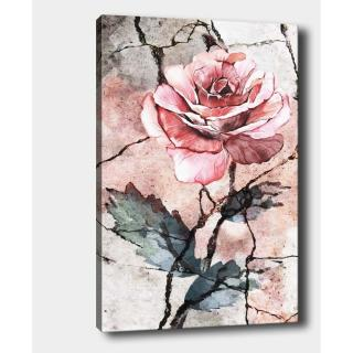 Nástěnný obraz na plátně Tablo Center Rose, 40 x 60 cm