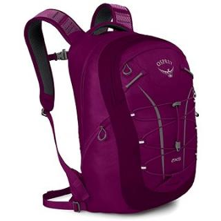 Osprey Axis 18 II Eggplant Purple