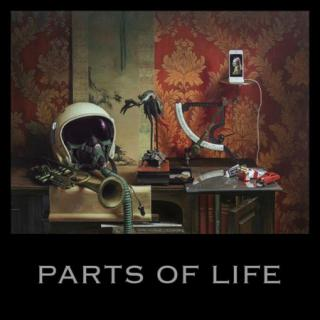 Paul Kalkbrenner : Parts Of Life LP