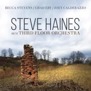 Steve Haines : Steve Haines And The Third Floor Orchestra  CD
