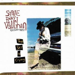 Stevie Ray Vaughan : Sky Is Crying LP