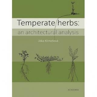 Temperate herbs: An architectural analysis